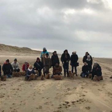 Foto's strandwandeling 29 januari 2017 Bloemendaal aan Zee